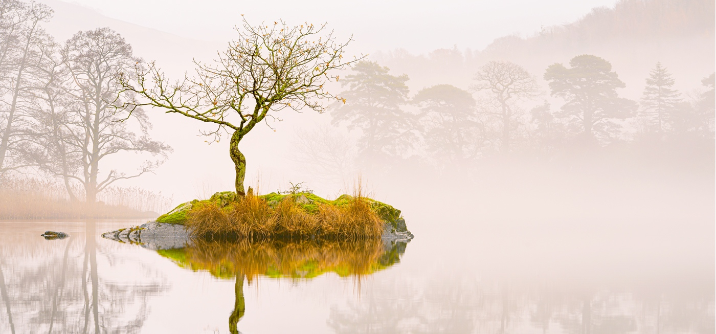 Northern Wild Landscape Photograph - Misty Rydal water