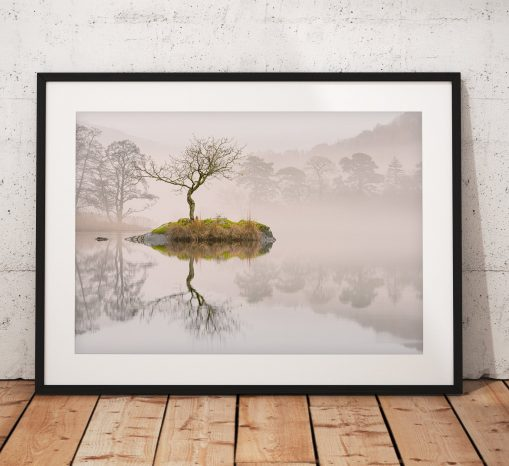 Beautiful calm misty lone tree landscape photograph taken on Rydal Water, Lake District, England. Wall Art