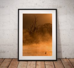 Lake District Landscape Photography, Grasmere, Rydal, Mist, Tree, Duck, Water, England. Landscape Photo. Mounted print. Home Decor