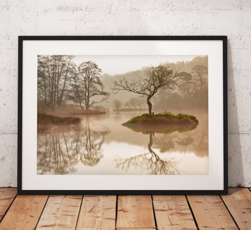 Northern Wild Landscape Photography - Lone Tree Lake District Landscape Photography taken on a misty morning at Rydal, England. Wall Art