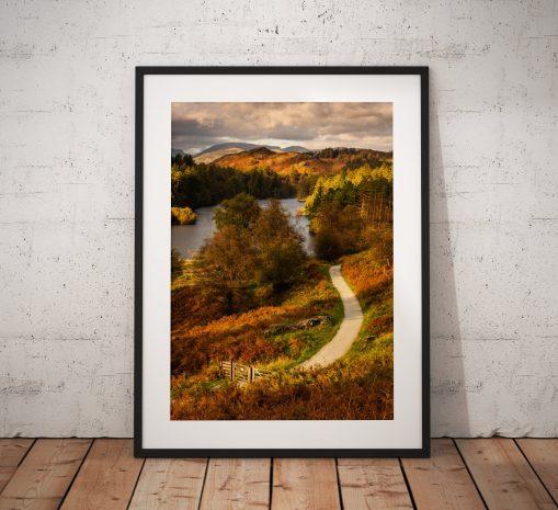 Tarn Howes Autumn