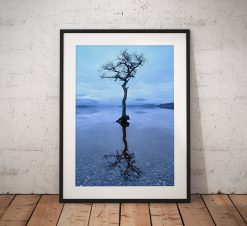 Scotland Landscape photograph, Loch Lomond lone tree reflection misty scene. Beautiful Scottish highlands. Wall art, fine art print