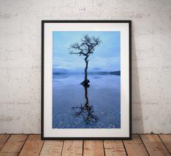 Scotland Landscape photograph, Loch Lomond lone tree reflection misty scene. Beautiful Scottish highlands. Wall art, fine art print