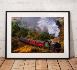 Autumn Steam Train