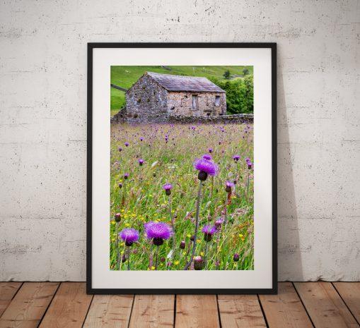 Purple Wild Flower Meadow